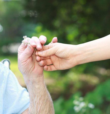charitable giving financial harvest wealth advisors florida