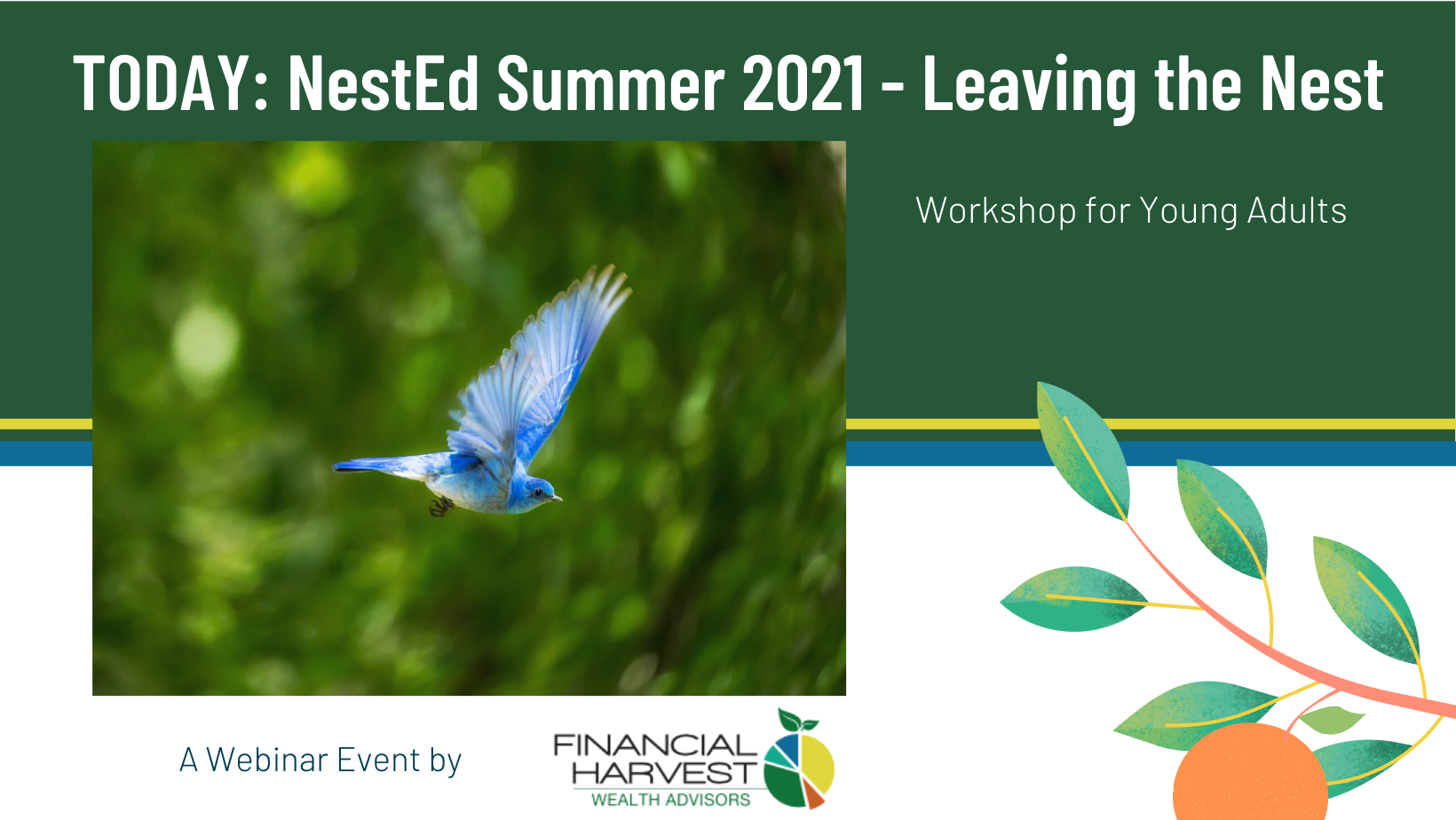 Today: nested summer 2021 - leaving the nest